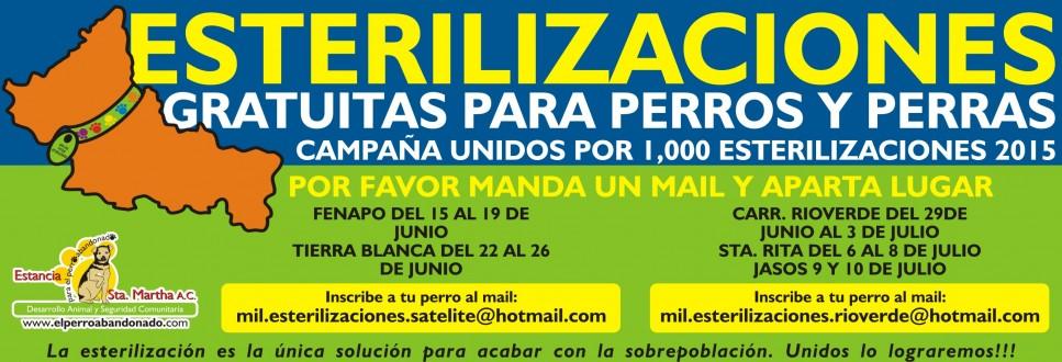 estreriliza-MIL-e1434348101748