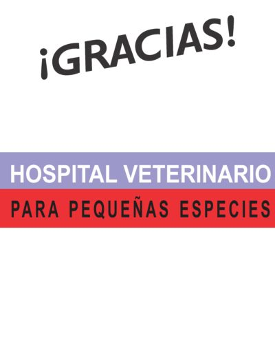 Lonas logos gracias33 ROCHA