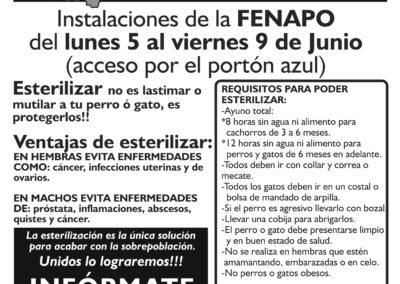 poster carta fenapo