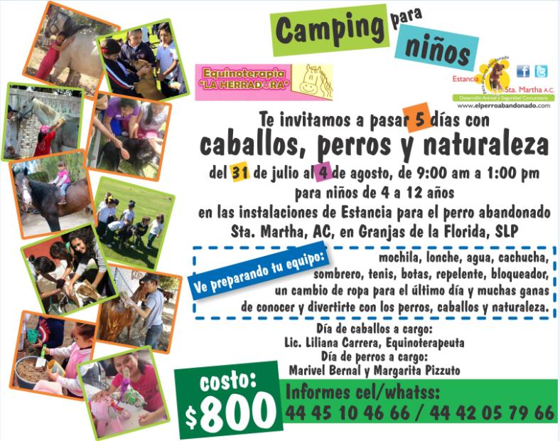 """CAMPING PARA NIÑOS """"CABALLOS, PERROS Y NATURALEZA"""""""
