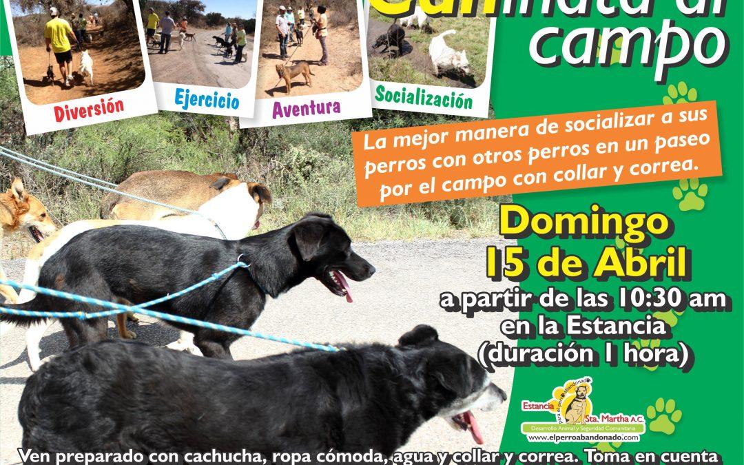 CANINATA AL CAMPO-ABRIL 15 DE ABRIL DE 2018, A LAS 10:30 AM