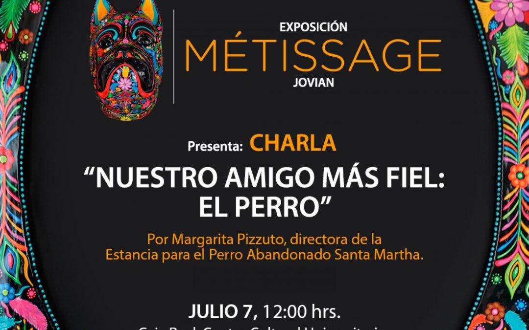 """Exposición MÉTISSAGE Y CHARLA """"NUESTRO AMIGO MÁS FIEL"""""""