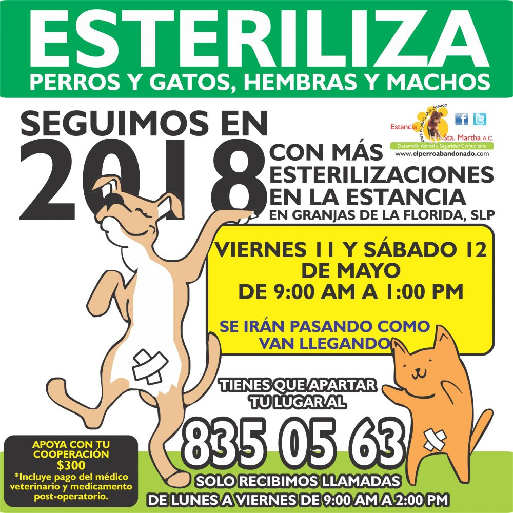 ESTERILIZACIONES EN LA ESTANCIA5 MAYO 11Y 12