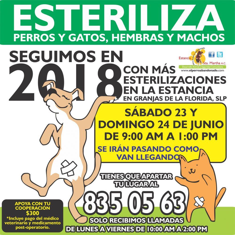 ESTERILIZACIONES EN LA ESTANCIA6 JUNIO23Y24