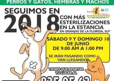 ESTERILIZACIONES EN LA ESTANCIA6 JUNIO9Y10