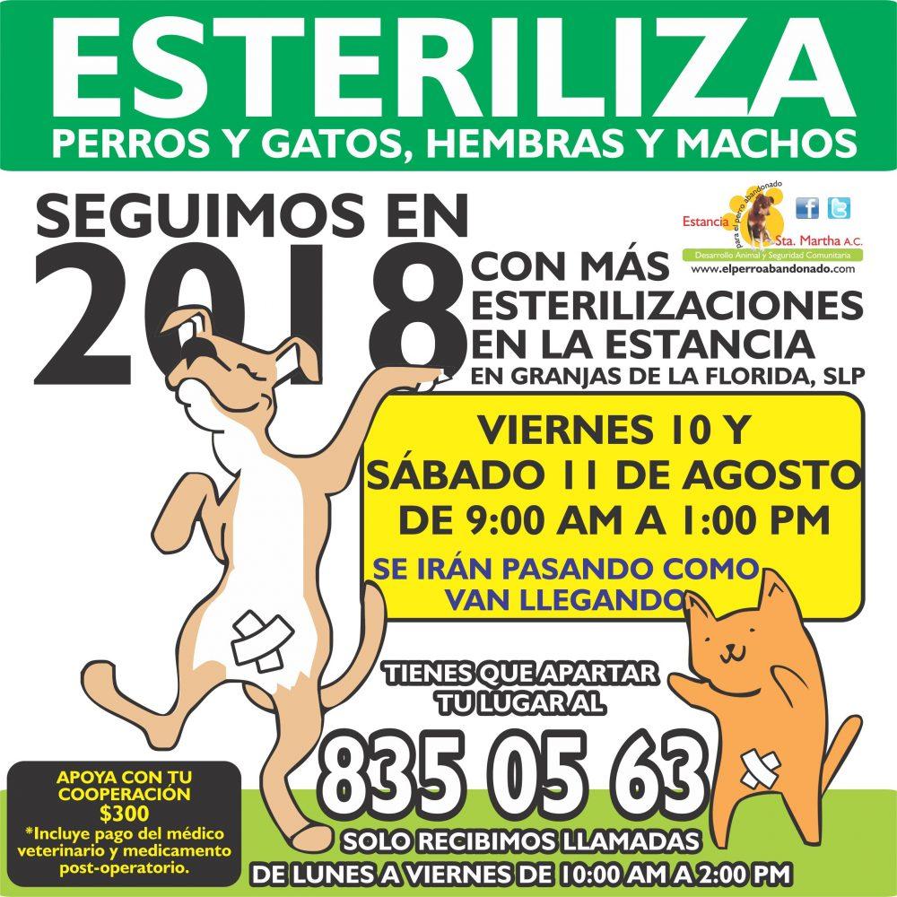 ESTERILIZACIONES EN LA ESTANCIA8 AGOSTO 10-11