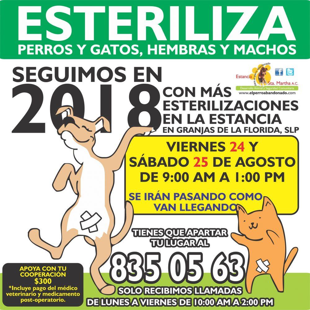 ESTERILIZACIONES EN LA ESTANCIA8 AGOSTO 24-25