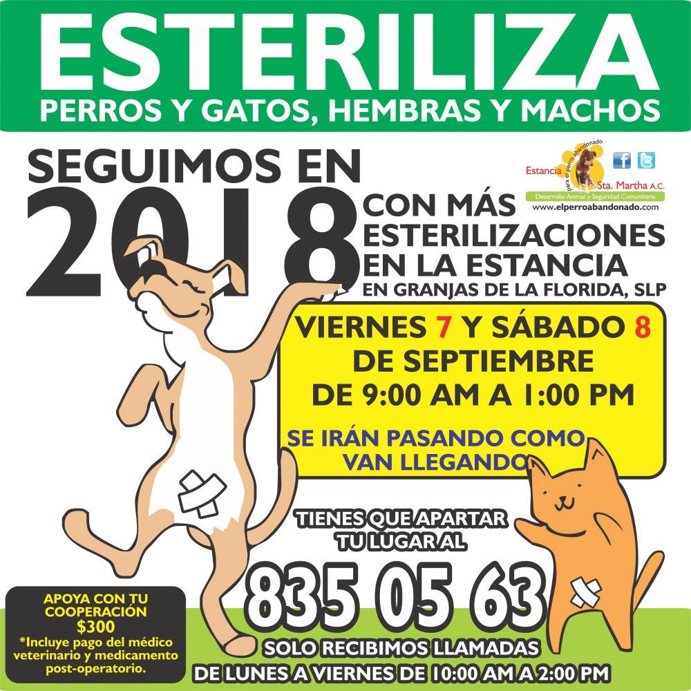 ESTERILIZACIONES EN LA ESTANCIA9 SEPT 7-8