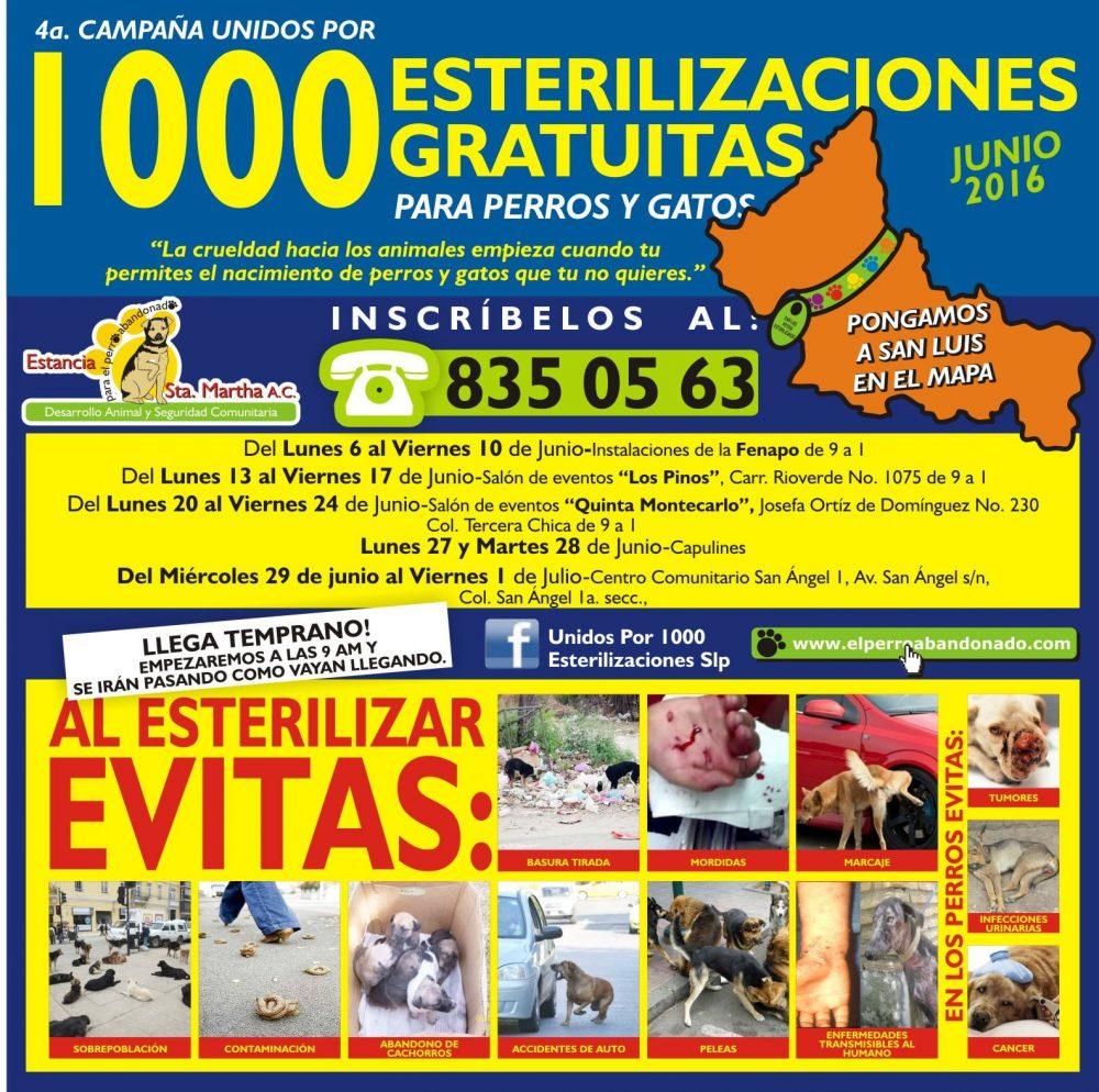 lona 1000 esterilizaciones
