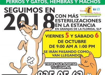 ESTERILIZACIONES EN LA ESTANCIA10 OCT-5Y6-2018