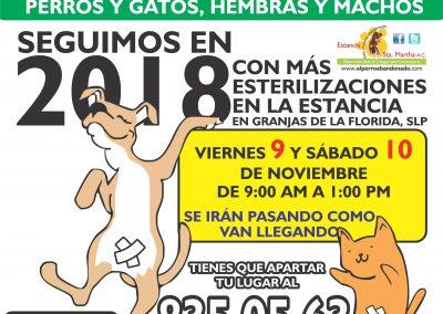 ESTERILIZACIONES EN LA ESTANCIA11 OCT-9Y10-2018