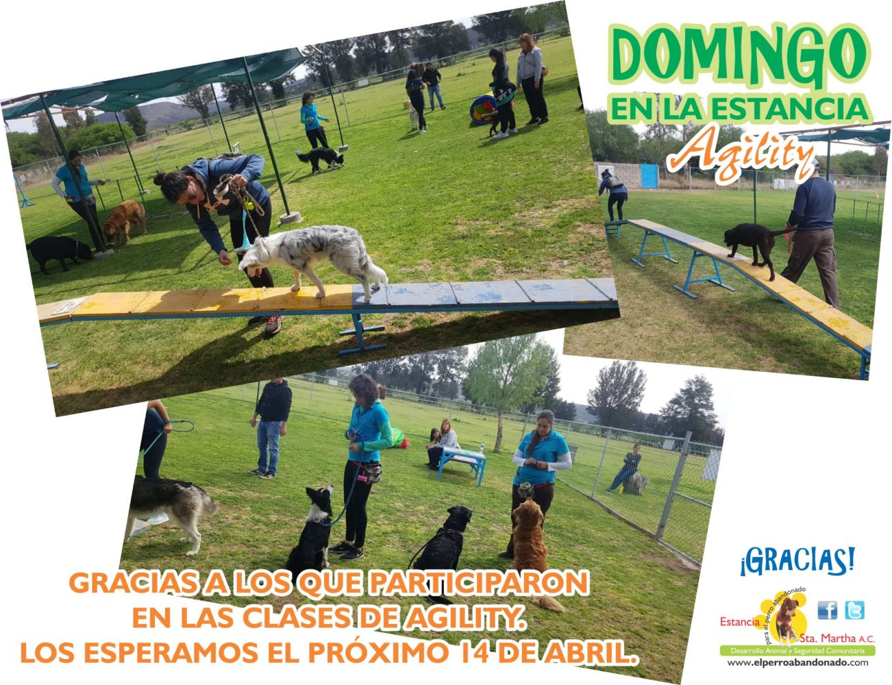 1 DOMINGOS DE PARQUE AG 17-03-2019