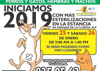1 ESTERILIZACIONES EN LA ESTANCIA ENE-25Y26-2019