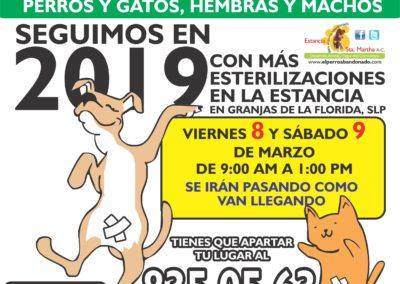 3 ESTERILIZACIONES EN LA ESTANCIA mar-8Y9-2019