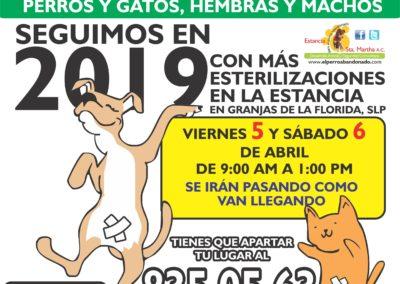 4 ESTERILIZACIONES EN LA ESTANCIA ABR-5 Y 6 2019