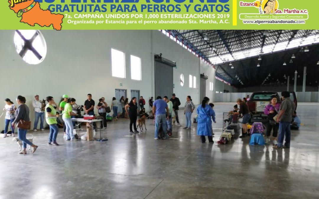 1000 ESTERILIZACIONES-FENAPO PRIMERA SEMANA