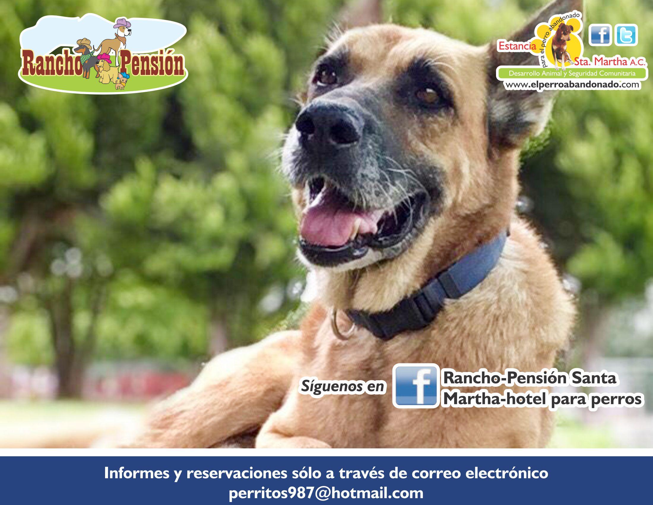 FB Rancho-Pensión-DUQUE