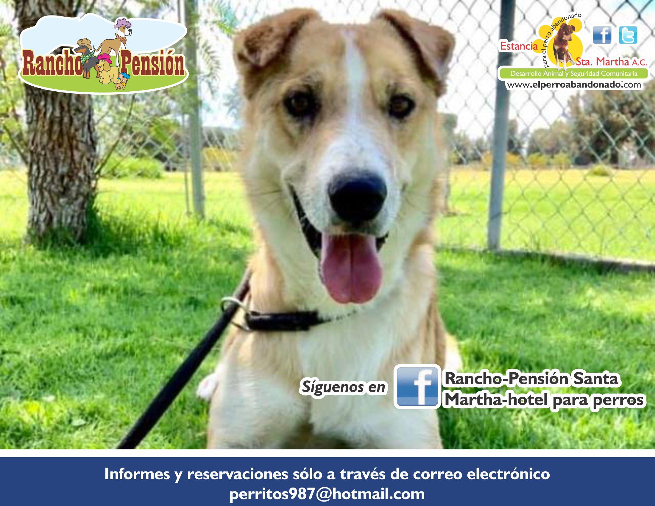 FB Rancho-Pensión-GUERA
