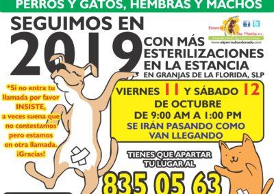10 ESTERILIZACIONES EN LA ESTANCIA OCT 11y12-2019