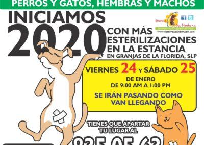 1 ESTERILIZACIONES EN LA ESTANCIA1 ENE-24Y25-2020